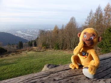 Königsstuhl 2016